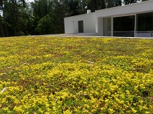 SOPRANATURE EXTENSIVE GREEN ROOF MIX