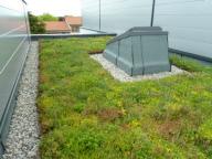 Green Roof Soprema
