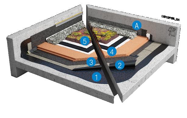Toiture végétales : toiture inversée sur le support en béton